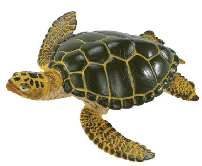Small Turtle Turtle Baby Model Marine Biological Model Toy Teaching Model Collection Animal Model Children Gift Toy(China (Mainland))