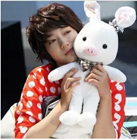 Super cute Korean dramas with the pig rabbit doll plush toy girlfriend creative quality plush pillow for her birthday(China (Mainland))