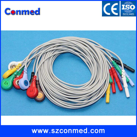 free shipping High quality Compatible Holter cable 10 lead ECG leadwire,DIN ten leadwire, terminal: 4.0 snap,IEC(China (Mainland))