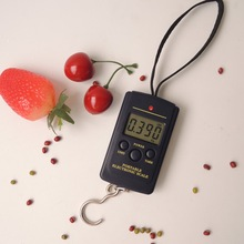Buy 40kg x 10g Mini Digital Scale Fishing Luggage Travel Weighting Steelyard Hanging Electronic Hook Scale for $4.19 in AliExpress store