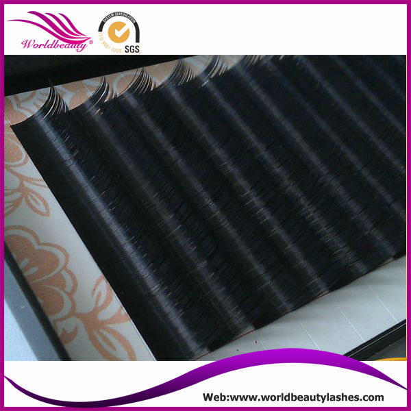 10trays/Lot 3D 6D Volume lashes 0.07mm thickness 10mm silk eyelash extensions<br><br>Aliexpress