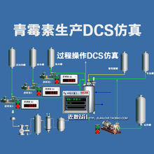 Penicillin simulation medical professional S T3000 simulation software simulation of chemical process simulation(China (Mainland))