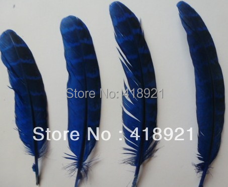 FreeShipping 100PCS beautiful pheasant the wings feathers dyed,Blue colors 4-7 inche For Christmas wedding decoration, DIY(China (Mainland))