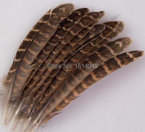 100 шт естественная индейки перья 12 - 18 cm / 5 - 7 дюймов разнообразие украшение и сбор