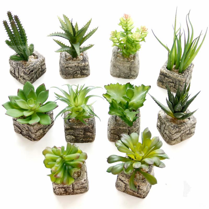 Image Result For Selling Plants Online