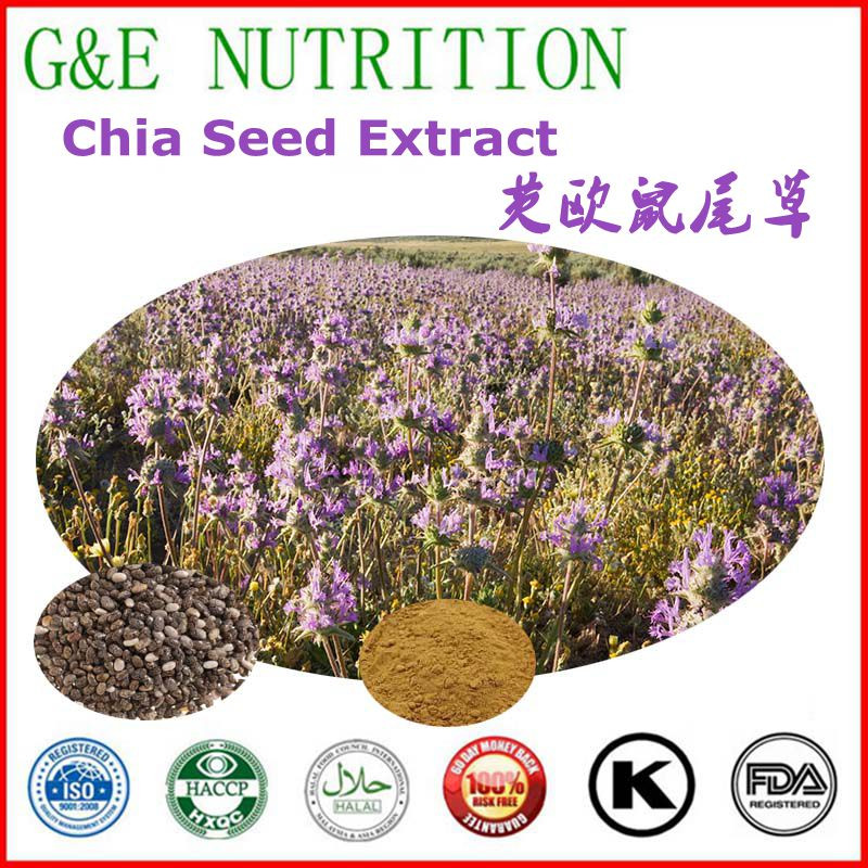 Factory Supply Organic Chia Seed Extract 900g