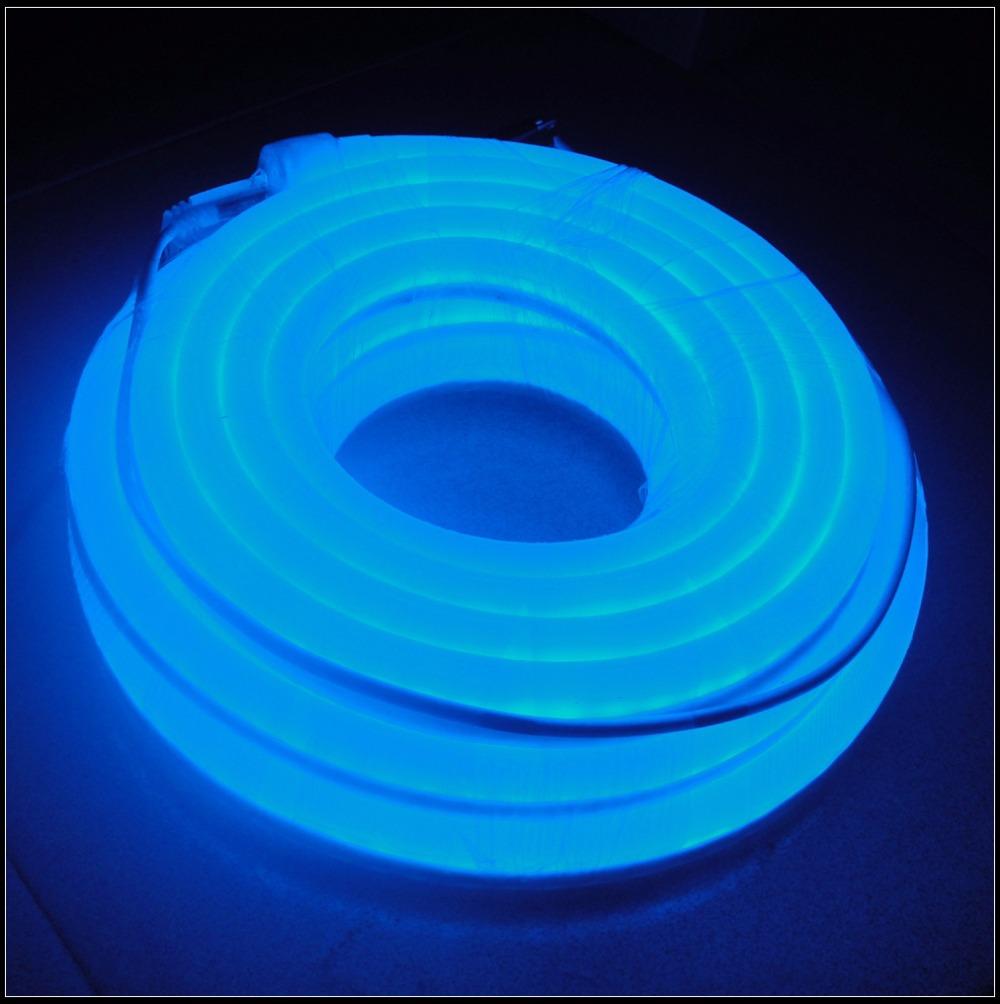 Неоновое освещение WestbayLED LED , 12 DIY , 10meters WF-LN-M-12V-EB неоновое освещение m