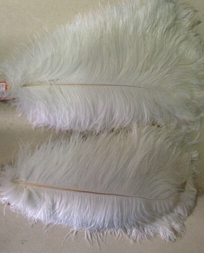 Free shipping manufacturers selling 50 pcs white ostrich feathers 14-16 inches / 35-40 cm(China (Mainland))