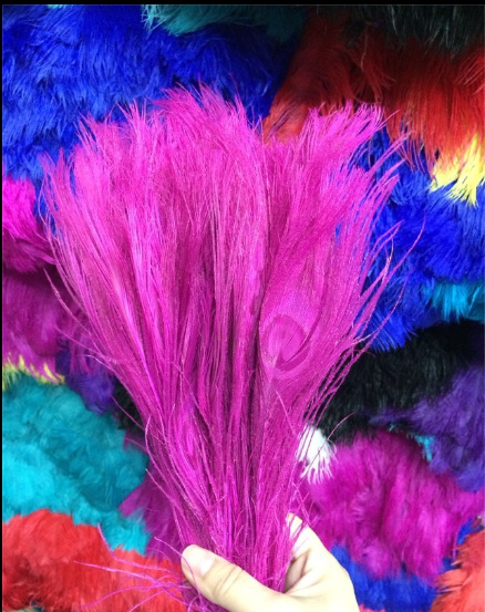 Free shipping Fuschia dyed peacock feather 100pcs/lot length 25- 30 cm 10-12 inch peacock feathers wedding decorations wholesale(China (Mainland))