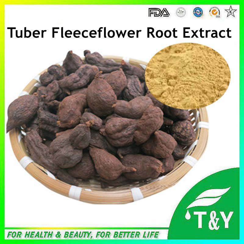 Fo-Ti Root Extract, Fo-Ti Root Extract Powder, Fo-Ti Root P.E.