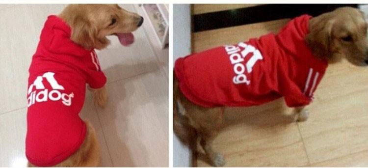 Big Dog Clothes Adidog Sport Pet Clothing For Large Dogs Hoodie Golden Retriever Coat Costume Size XS S M L XL XXL XXXL 4XL 11312