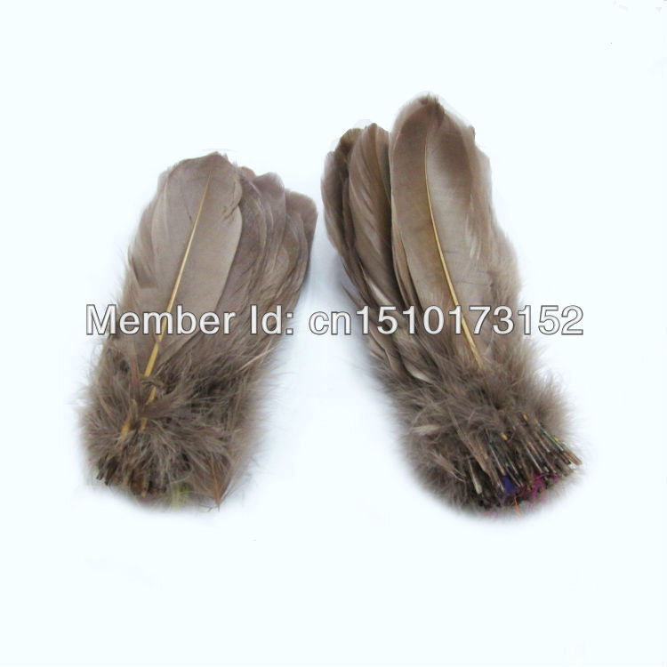 20s dyed Loose Soft Rod Coffee Hard Goose Feathers lots sale RP-8 - TiTi Feather Market store
