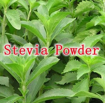 No Bitter Taste 500gram Stevia Powder Zero Calories Rebaudioside A 80% (RA80%) Halal/ Kosher certificate free shipping<br><br>Aliexpress