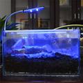 48LED 24LED 2 Size Aquarium Light Flexible Clip Switch Button Control White and Blue Color 3