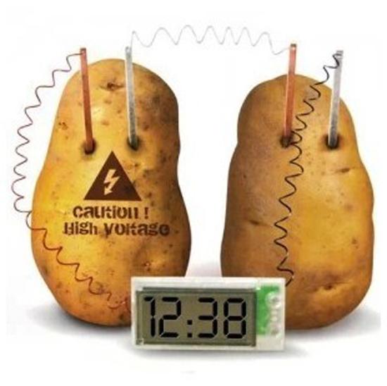 Potato Clock Green Science Project Experiment Kit kids Lab HomeSchool Curriculum DIY Home School Toy Mr Spud Head Educational(China (Mainland))