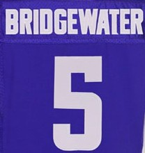 28 Adrian Peterson shirts Jersey 5 Teddy Bridgewater 55 Anthony Barr 22 Harrison Smith stitched can mix order Size:M-3XL(China (Mainland))