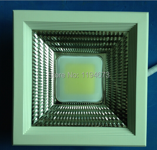 Free Shipping Epistar LED Downlight 30W Warm Cool White COB SMD Recessed Down Lights lamp AC90-240V(China (Mainland))