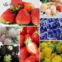 200 Pcs/bag, Strawberry Seeds, Edible Strawberry Four Seasons Large Type Big Sweet Taste Bag Mix Color