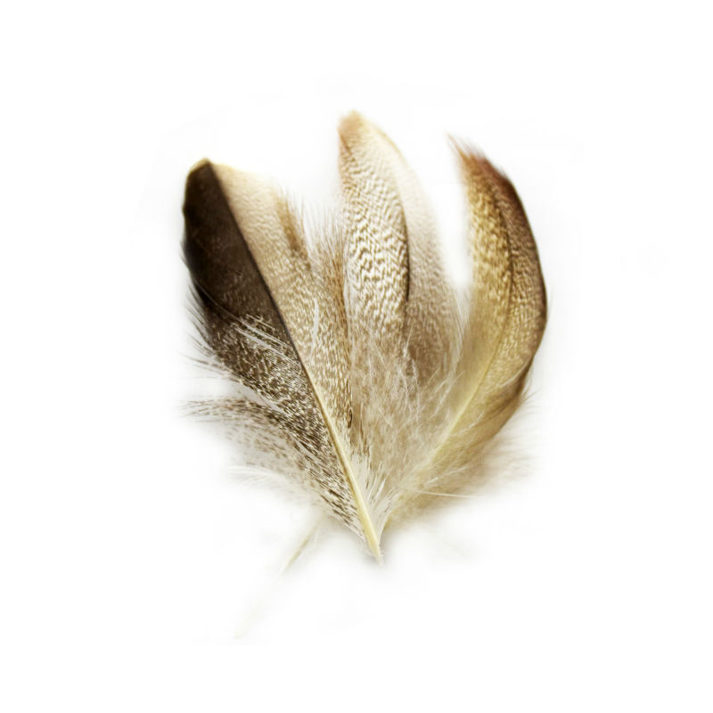 Natural Hair Feathers Wholesale