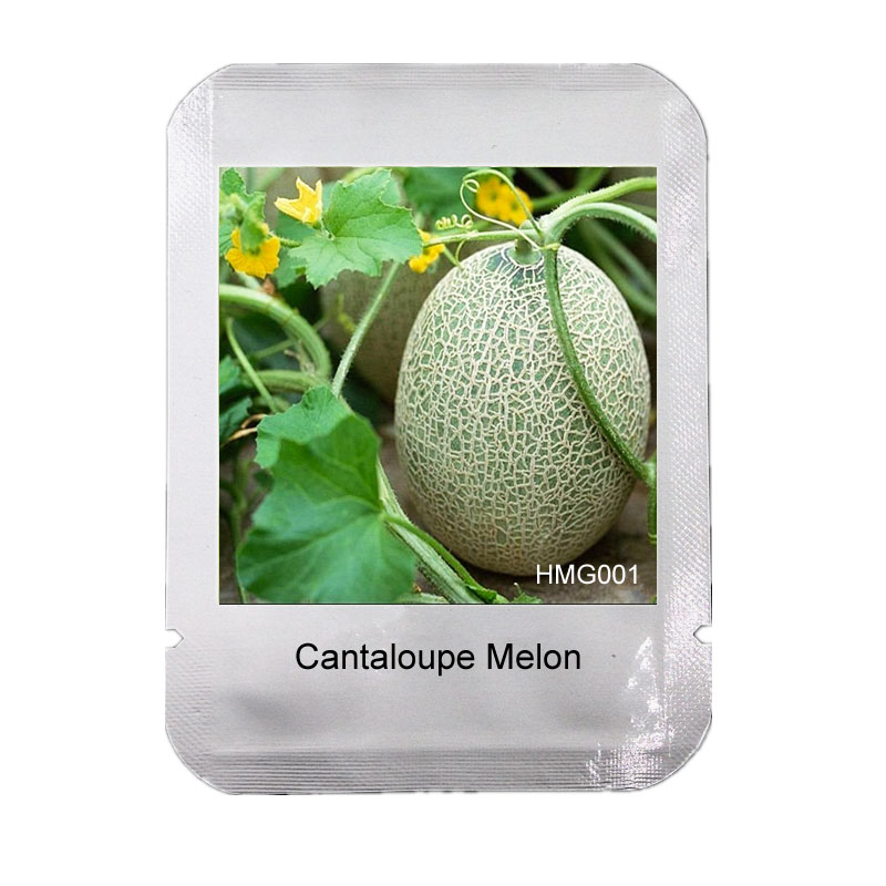 20 Pcs Extra-big Extra-sweet cantaloupe seeds, Professional Pack, fruits and vegetables potted balcony HaMi melon seeds, #HMG001(China (Mainland))