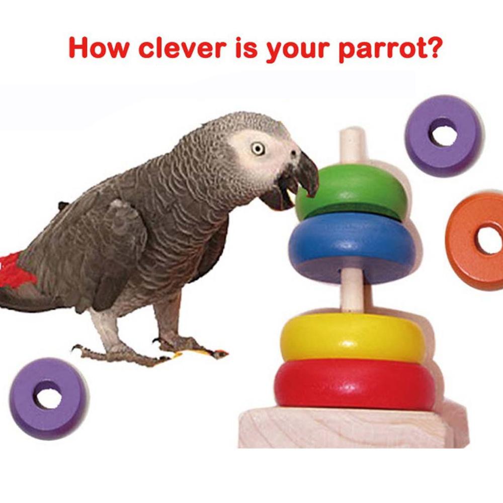 Bird Toy Outlet : Aliexpress buy pet s world hot sale rainbow