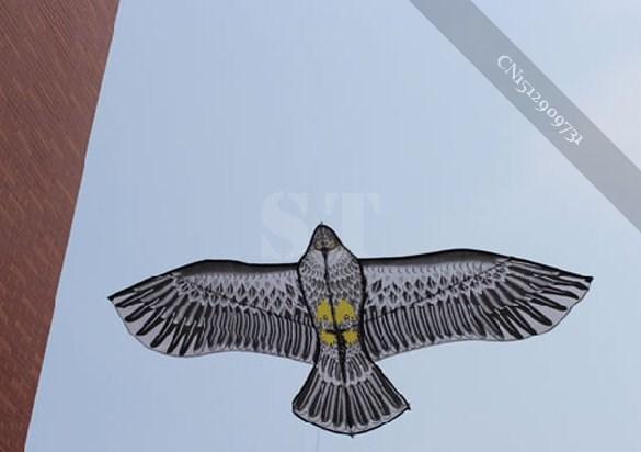 Huge Eagle Kite With String Novelty Toy Kites Eagles Large Flying New Toys(China (Mainland))