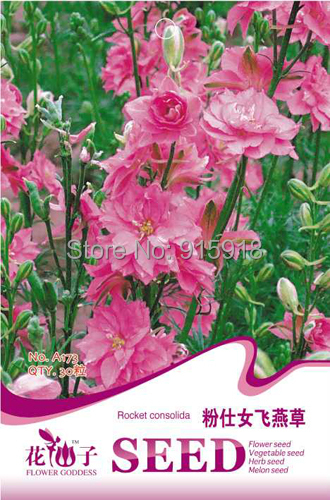 Buy 2 Get 1!(Can accumulate ) 1 Pack 30 Seed spikelike cute pink rocket consolida A173(China (Mainland))