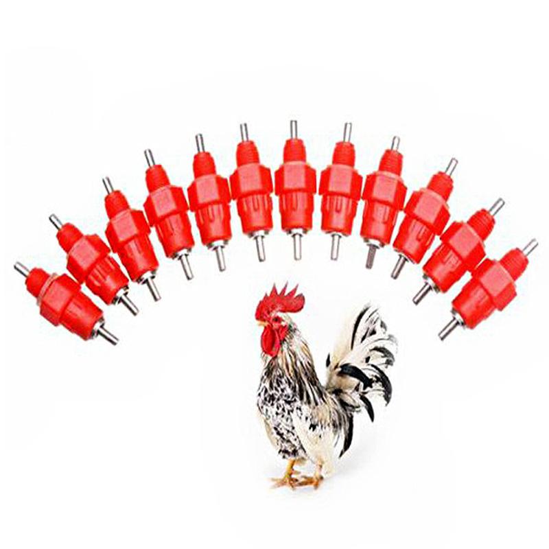 Товары для кормления птиц 12Pc