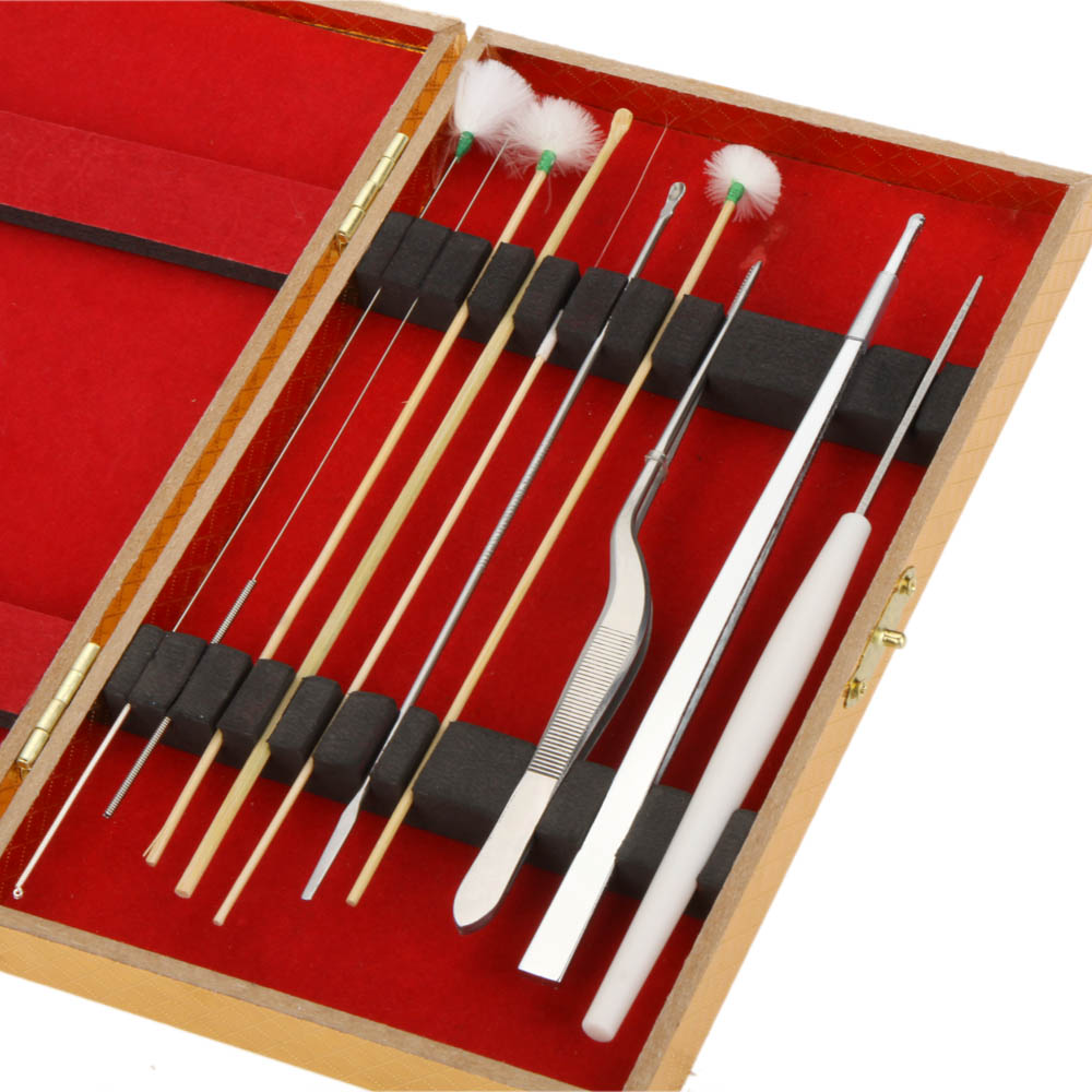 10Pcs Ear Pick Spoon Ear Wax Remover Cleaner Tweezers Tool Goose Feather Stick Curette Set+Case Health Ear Care Machine(China (Mainland))
