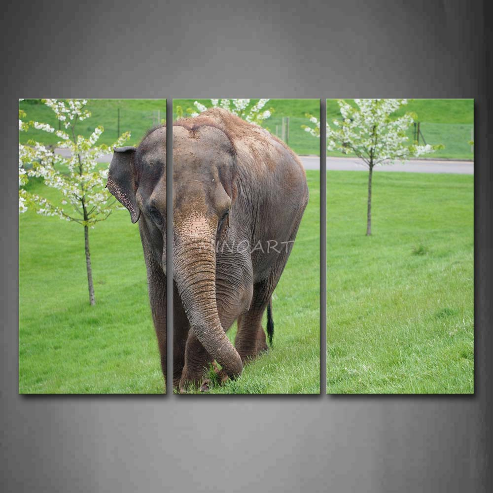 3 Piece Wall Art Painting <font><b>Asian</b></font> Elephant Walk On Lawn Trees Picture Print On Canvas Animal 4 The Picture <font><b>Home</b></font> <font><b>Decor</b></font> Oil Prints