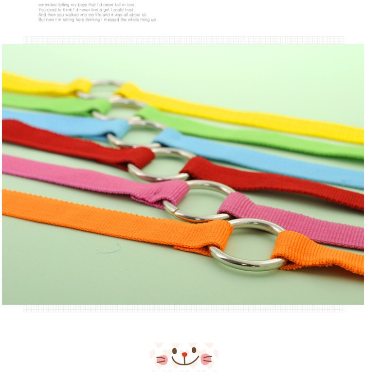 5 color New Double Multiple Dual Coupler 2 Way Two Pet Dogs Nylon Dog Pet Walking Leash Puppy Leads PG24 (13)