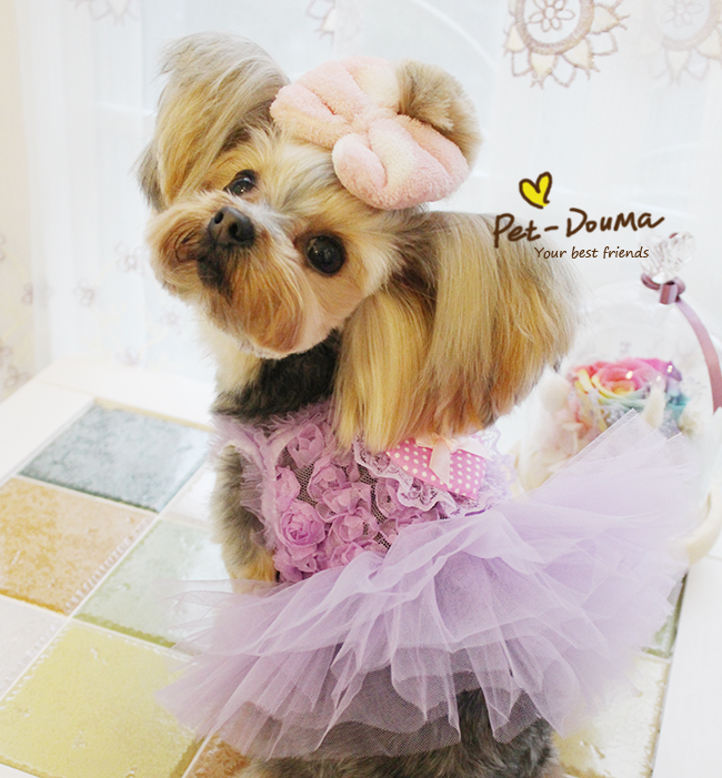 Cute Princess Rose Dream Pet Dresses Bride Pet clothes Dog Clothes Products for dogs Puppy Cats Clothing for S&A 100042(China (Mainland))