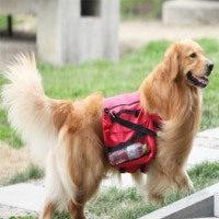 Hot selling Large Pet bag Medium and Big dog outdoor backpack 2015 new pets food and toys bag for dogs size L 3 colors(China (Mainland))