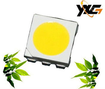 hot shipping PLCC6 Series 5050 3Chip 10~12Lm warm/cool white type TOP SMD LED $35.00 free shipping