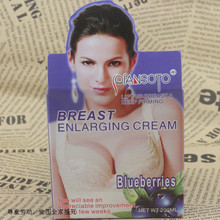 Breast Lift Up and Firming Fast  Beauty Care Cream 200g with blueberry essence