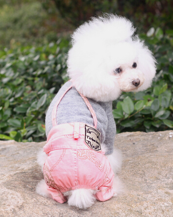 Dog Clothes and Shoes Keep your pet looking fashionable with the latest dog clothes, shoes and apparel. From dresses and jumpers, to hoodies and bows, it's all at PetSmart.