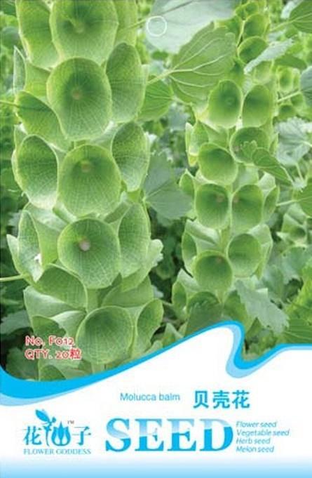 1 ORIGINAL PACKS 20 SEEDS GREEN Shell Flower * ANNUAL PALNTS CUT FLOWERS* Molucella Laevis(China (Mainland))