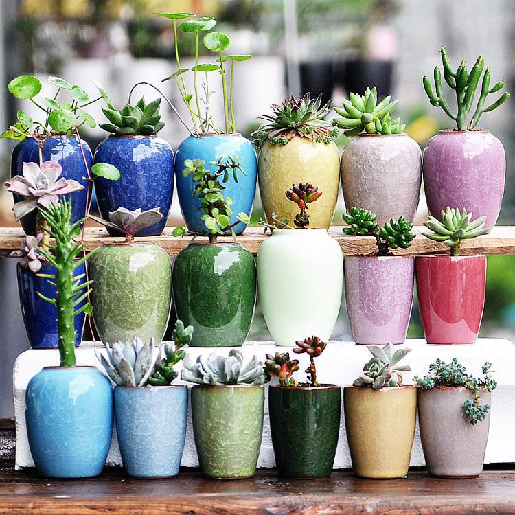 Ceramic Bonsai Pot Ceramic Plant Pot Decorative For Garden