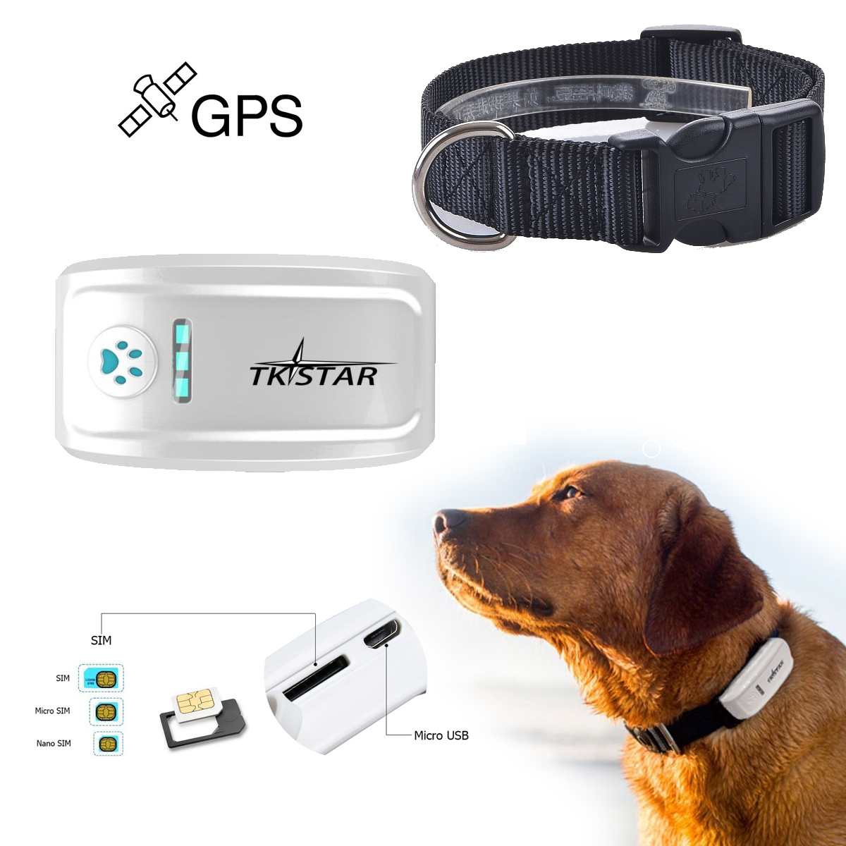Waterproof TKSTAR Mini GPS Tracker Locator GSM GPRS Tracking System for Pets Dog Cat Old man PS013-SZ(China (Mainland))