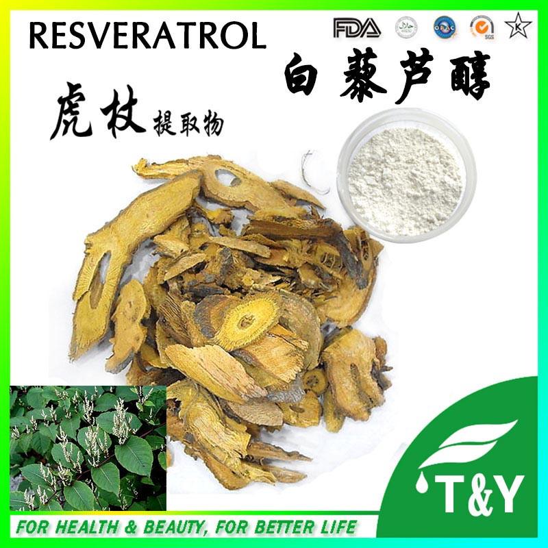 Top Quality Polygonum Cuspidatum Extract Resveratrol 98% 60g