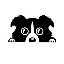 14*8CM Border Collie DOG Personality Reflective Glass Rear Pet Car Sticker Black/White CT-505