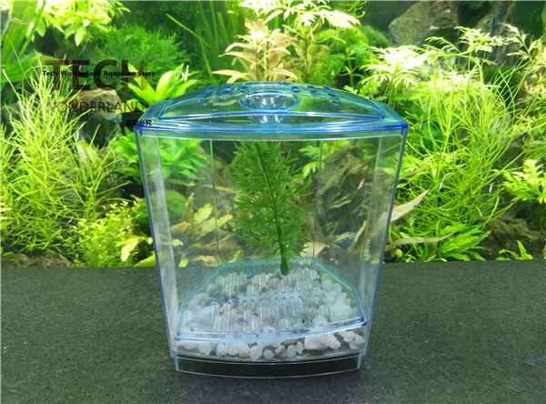 Online buy wholesale plastic turtle bowl from china for Small plastic fish bowls