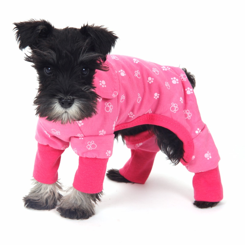 Small Dog Clothing Boutique