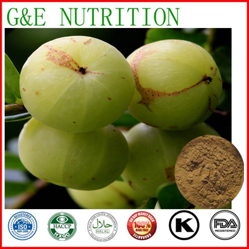 1000g Phyllanthus emblica/ Amla/ Emblic leafflower fruit Extract with free shipping<br><br>Aliexpress