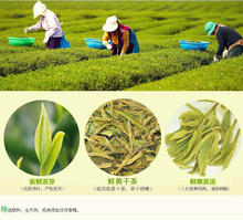 250g Organic Chinese Green Tea Long jing new the Chinese green Longjing tea the China green