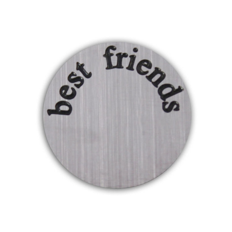 16MM Stainless Steel ' best friends ' Floating Locket Window Plate Fit 25MM Glass Living Lockets 10Pcs/Lot(China (Mainland))