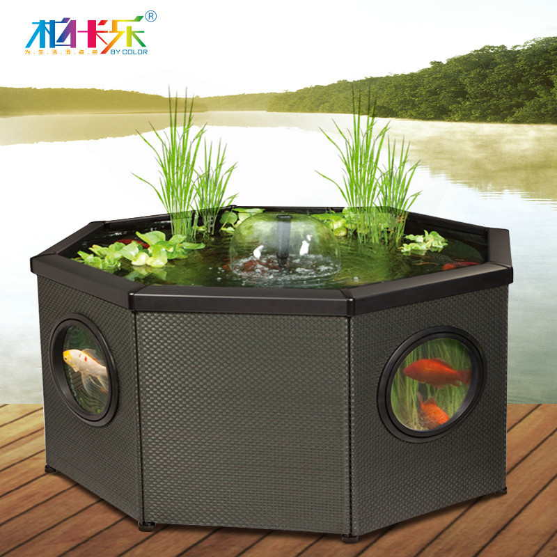 outdoor ecological aquarium fish tank aquarium fish tank