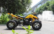 WY-Cool all terrain beach car, car, 250F1 motorcycle bike(China (Mainland))