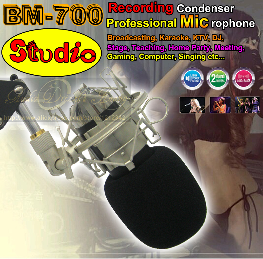 Professional Wired Dynamic Recording Studio Condenser Microphone BM700 Mic For Karaoke Mike Mikrafon & Metal Shock Mount Stand