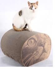 Light green cat toy cat corrugated board furniture(China (Mainland))